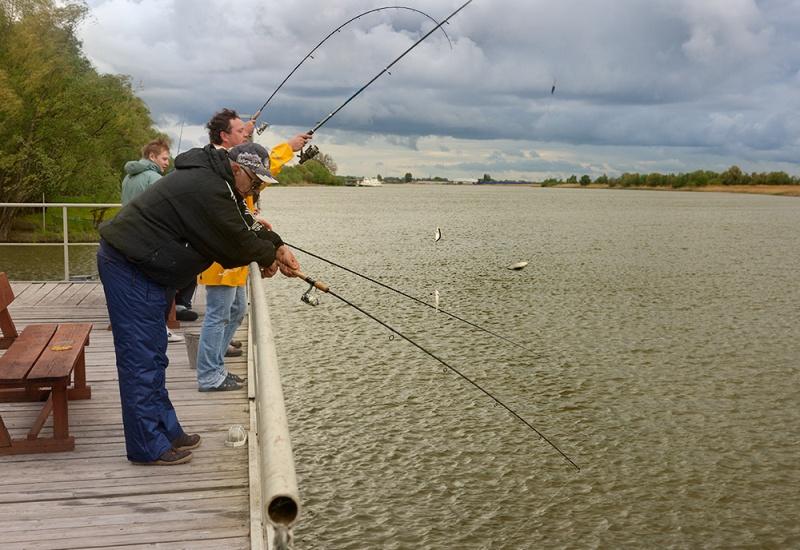 рыболовная база севрюга