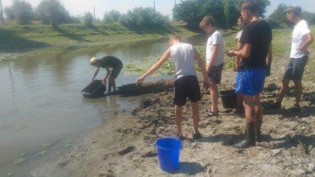 """Вот и мы немного внесли свою помощь в спасение молоди рыбы, спасибо Раздорскому сельсовету в организации """"голубого патруля""""."""